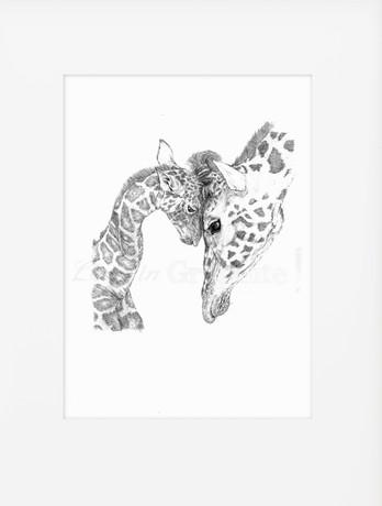 Banner mount (giraffe).jpg