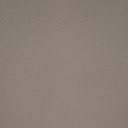 truffle-web-image-600w-600h