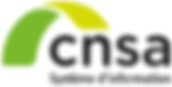 logo CNSA_new.png
