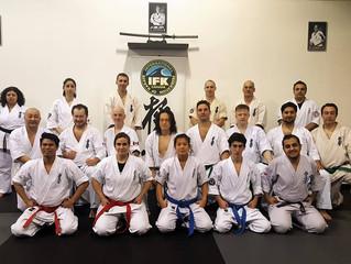 Report on the Knock-Down Fighting Seminar with Sensei Mikhail Zimerman