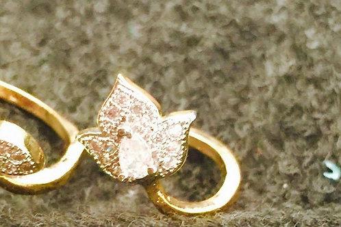 Finer Ring 5