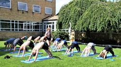 Yoga i dronningehaven