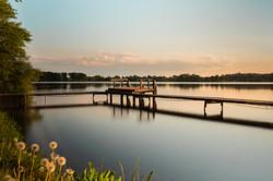 Naturen i Viborg2