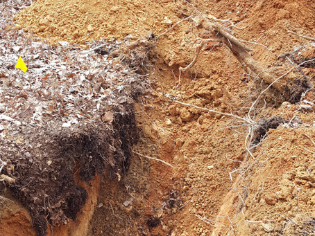 Useful Info for your Soil Consultant: Getting Ready Part 3