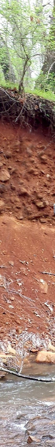 soil profile_tall.jpg