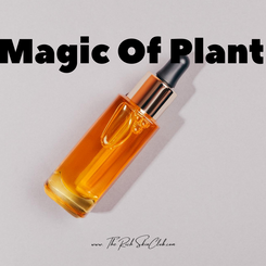 Make Your Own Replenishing Face Oil