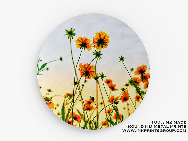 Yellow Flowers Large Round HD Metal Print. M0014