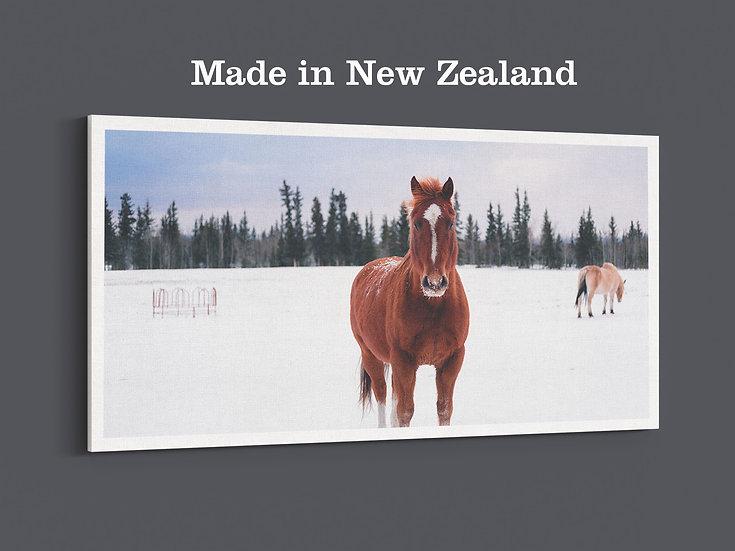 Premium Extra-Large Photo Canvas Prints , SKU a0025