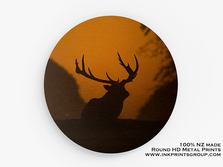 Deer Large Round HD Metal Print.  M0007