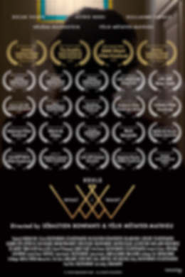 Affiche What I Want Paradigm Fims, musique électronique, clip décalé,stylé, élégant, réalisé par Sébastien Bonfanti, Félix Métayer