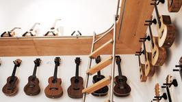 MWE Vario Schiebeleiter Klassik mit Holzstufen