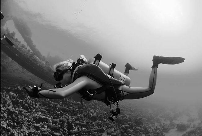 курс rescue diver padi
