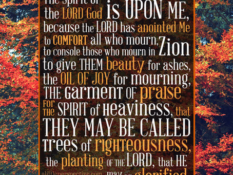 Jesus, Heal Women and Men Hurting From Abortion!(Prayer Journal 67)
