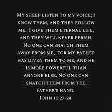 Jesus, Thanks For Never Letting Go of Me! (Prayer Journal 49)