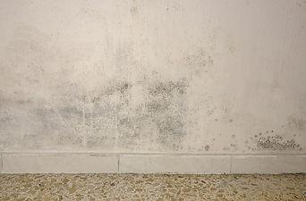 5 parede com umidade.jpg