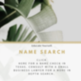 name search.png