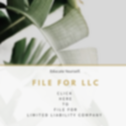LLC Filing for Texas