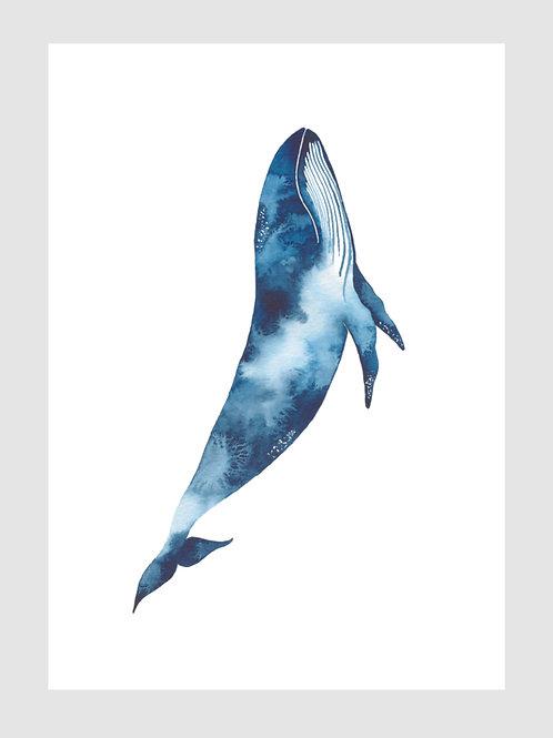 baleia azul vertical • estela miazzi