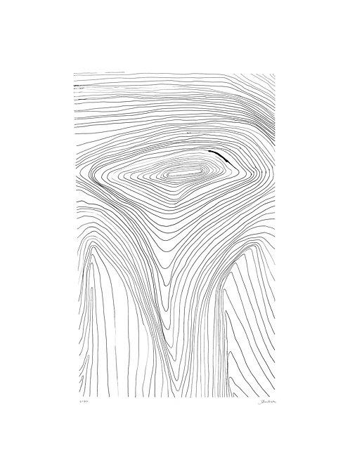 linhas 21 • glauber sampaio | com moldura