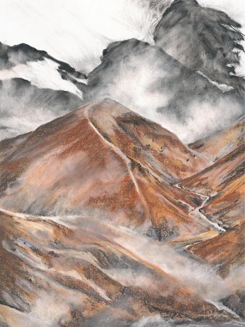 landscape • heidy wein