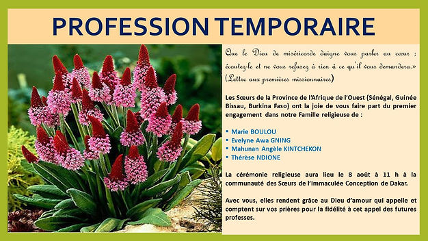 Profession temporaire (2).jpg