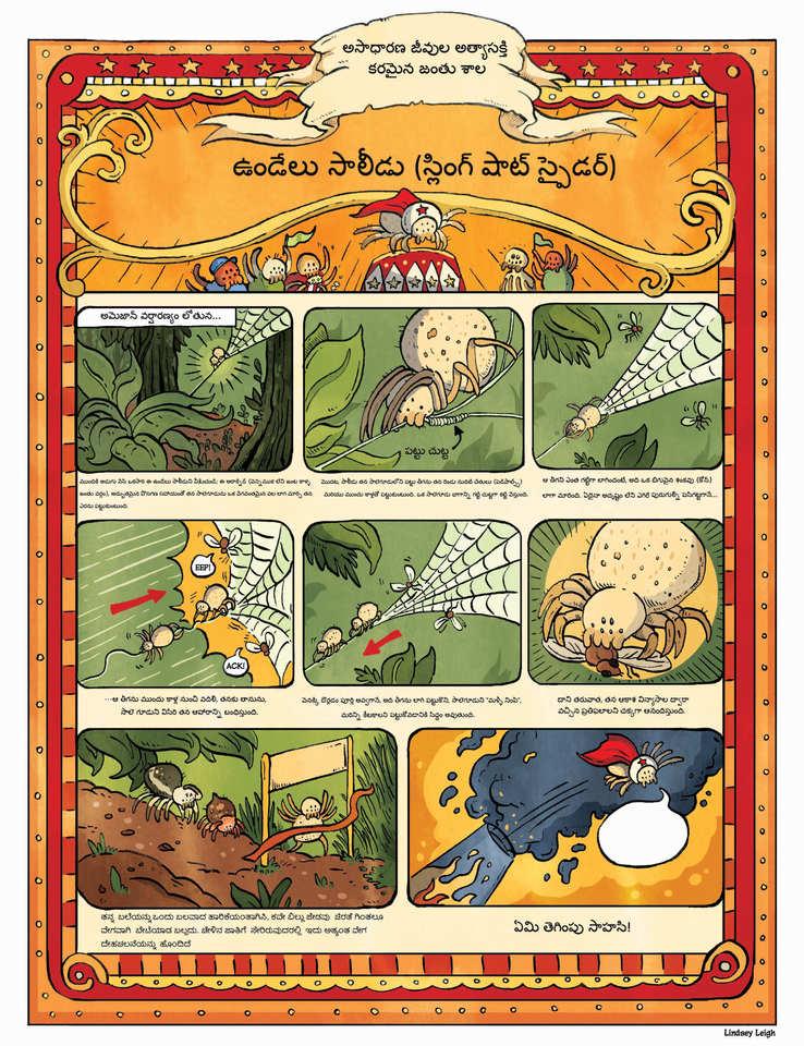 SpiderComicFinal_Telugu_RGB.jpg