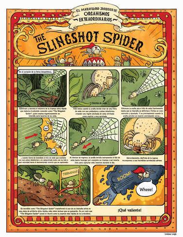 SpiderComicFinal_Spanish_RGB.jpg