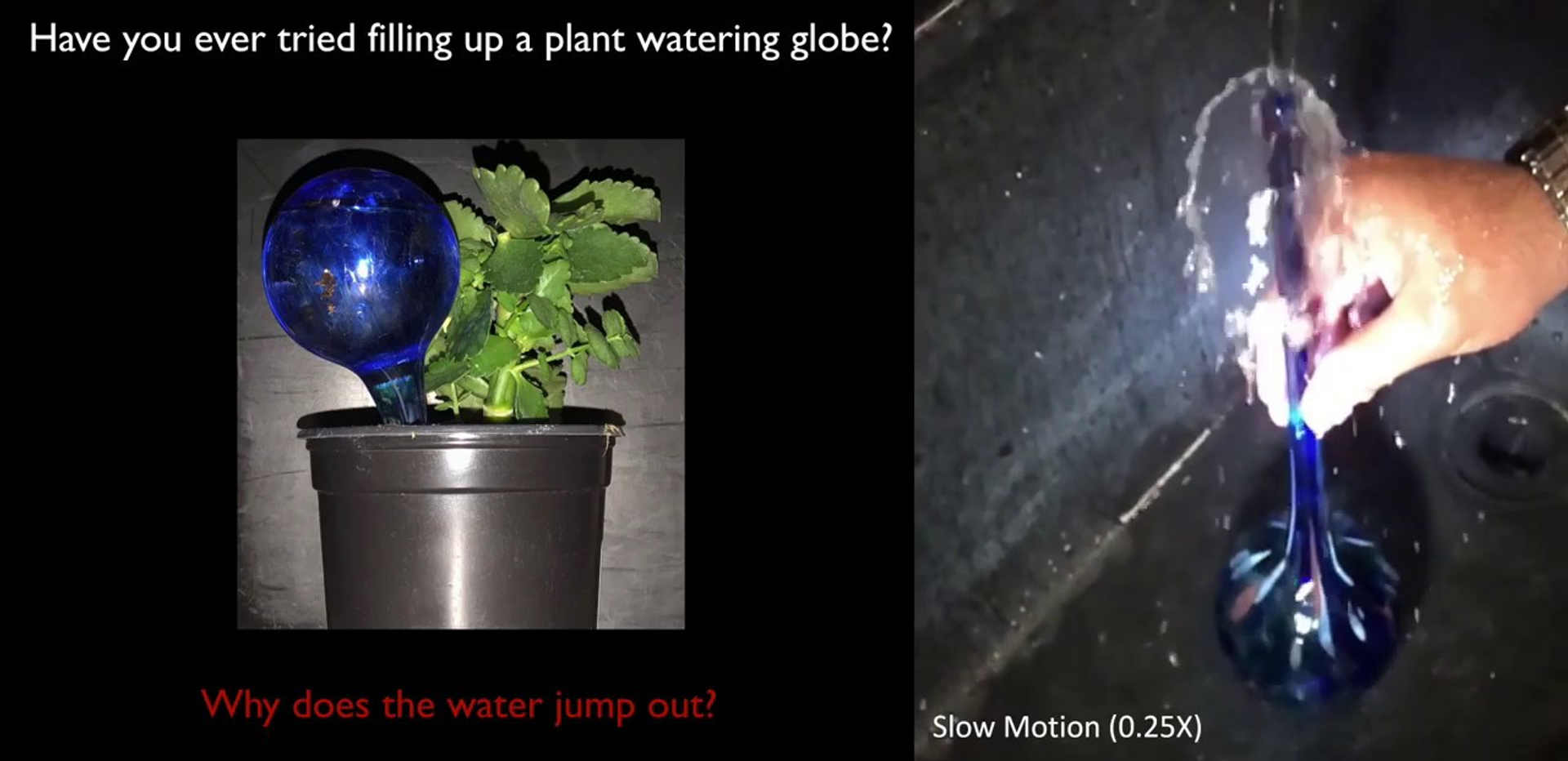 Jack in the Bottle: How fluids jump out of a globe