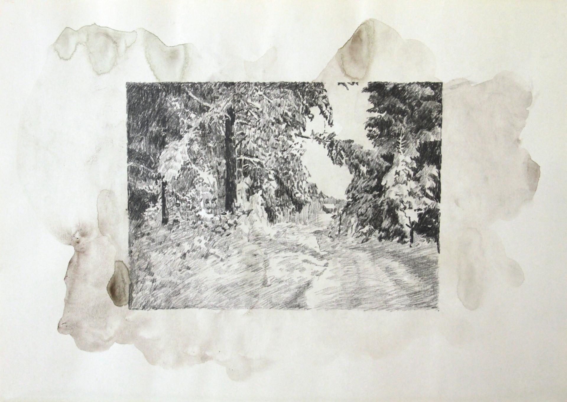 Real and Imaginary Spots I,2009