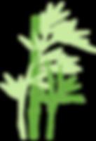 Bamboo_logo1.png