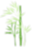 Bamboo_logo1_edited.png