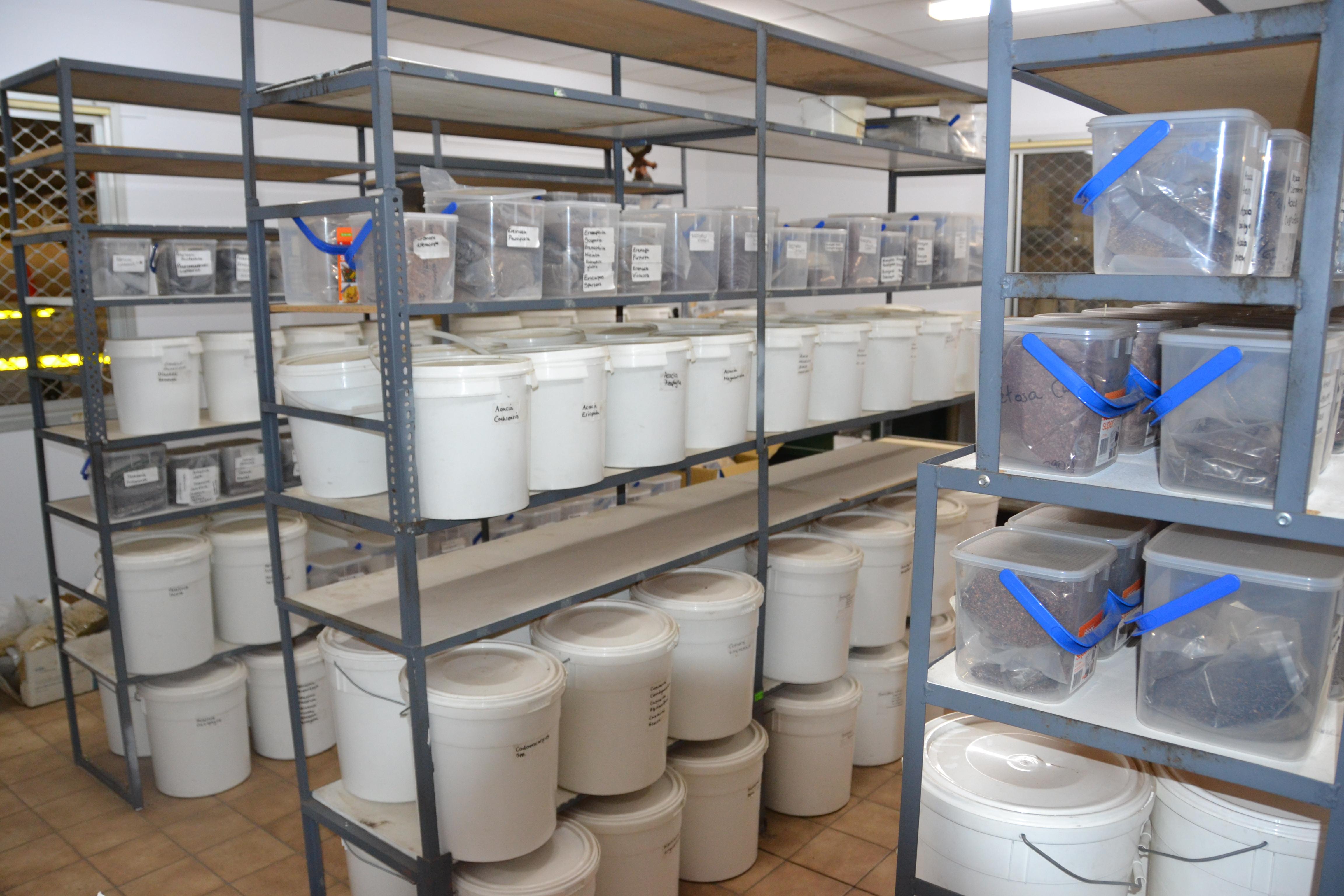 Seed storage by species