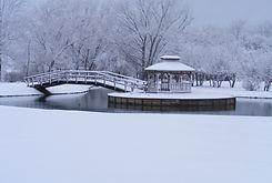 Winter pic.JPG
