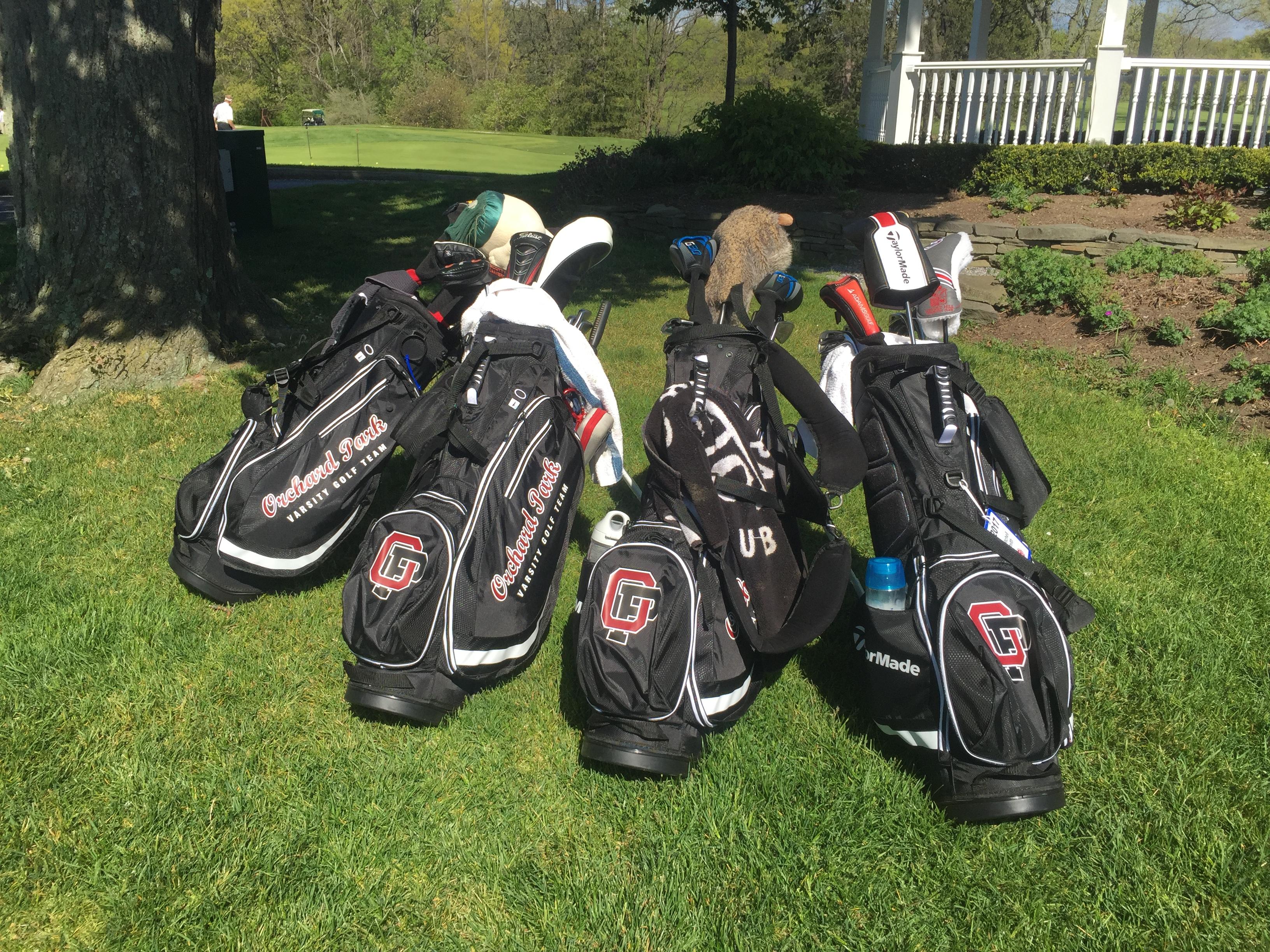 golf bags (2)