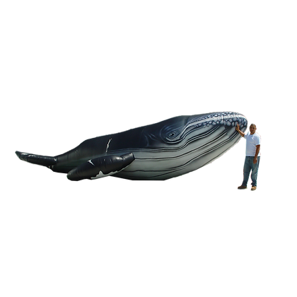 Inflatable Humpback Whale