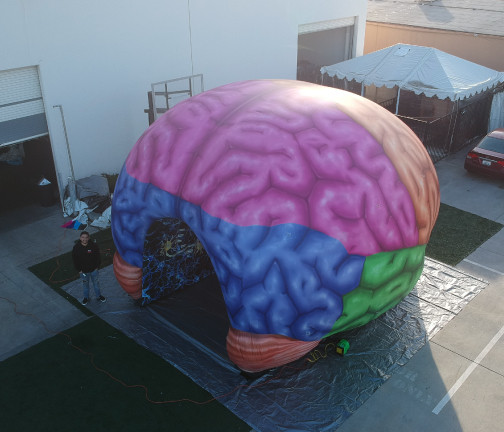 Replica Inflatables: 22'x22' Brain Tunnel Aerial Angle