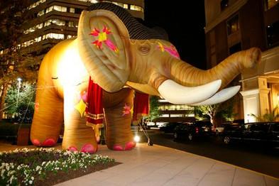 20' Moulin Rouge Elephant