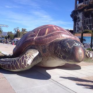 25' Sea Turtle Replica