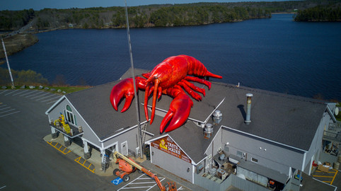 80' Realistic Lobster