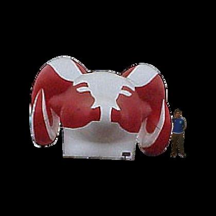 Inflatable Ram Head