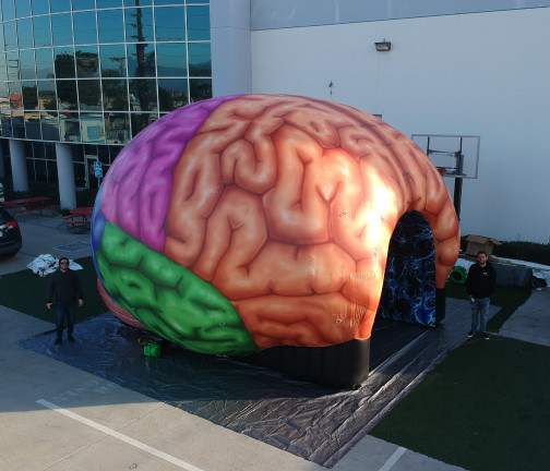 Replica Inflatables: 22'x22' Brain Tunnel Aerial Side