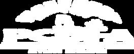 _PCBFA Logo White Transparent Background
