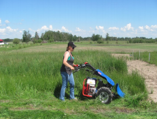 Perennial Forage Demonstration in High Prairie: Yield & Feed Value Following Second Year of Cutting