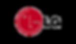 LG logo_edited.png