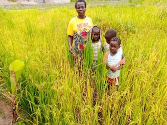 Dona Adina comemora a colheita deste ano