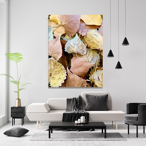 Fallen Big Leaves Collection Wall Art Canvas 16x20