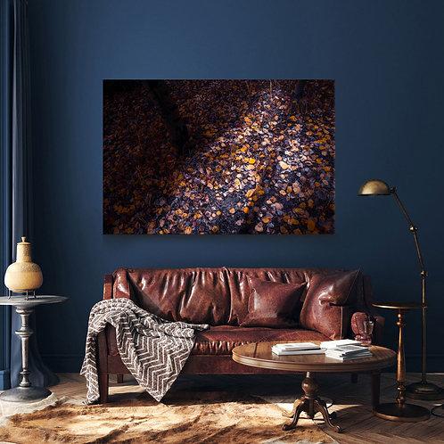 Fallen Autumn Leaves  Landscape Canvas Print 20x16