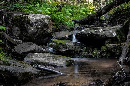 Maxwell WaterFall _Evergreen CO.jpg