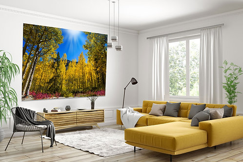 Aspen Trees and Blue Skies.Wall Art Canvas Print