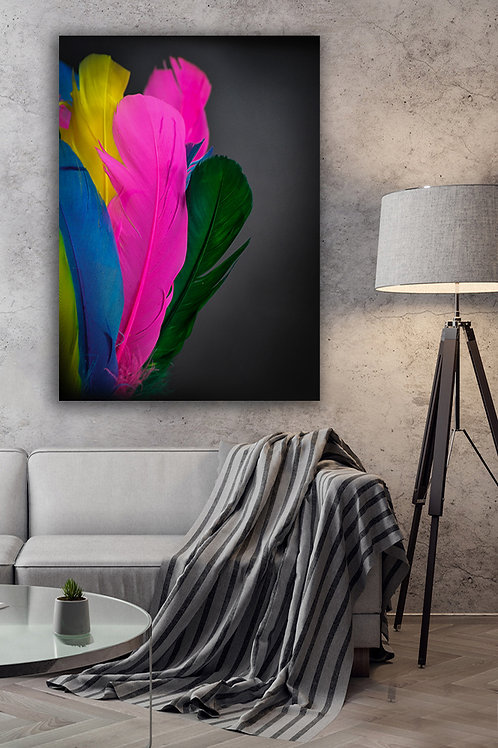 Colorful Feather Canvas Giclée Wall Art  Canvas Print 12x16